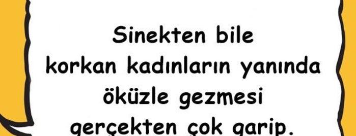 Göztepe Balıkçısı is one of Semin : понравившиеся места.