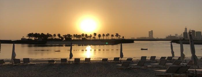 Ritz Carlton Hotel Beach is one of Lugares favoritos de Tawfik.