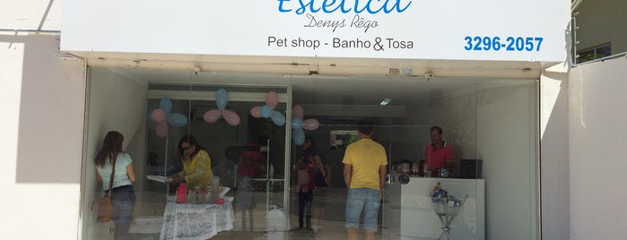 Pet Estética Dennys Rêgo is one of สถานที่ที่ Clau ถูกใจ.