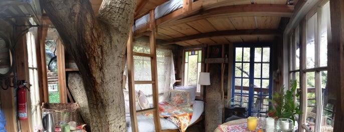 Doug & Linda's Treehouse is one of favorites.
