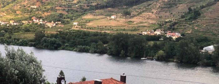 Quinta de São Bernardo is one of Portugal.