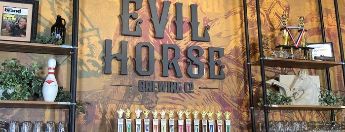 Evil Horse Brewing Company is one of Chicago area breweries.