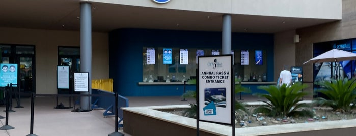 OdySea Aquarium is one of Phoenix, AZ..
