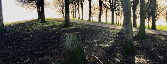 Éamonn Ceannt Park is one of Nicola 님이 저장한 장소.