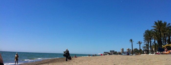 Playa de Los Álamos is one of สถานที่ที่ Miguel ถูกใจ.