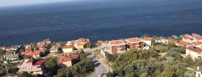 Esenköy is one of Muhammed Mahmud 님이 좋아한 장소.