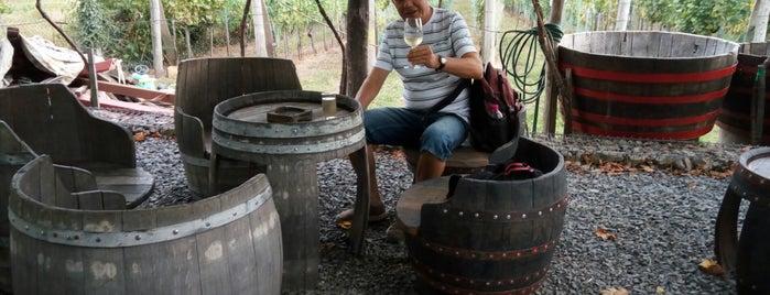 Dobosi-Stier Pincészet is one of Borbár / Wine bar.