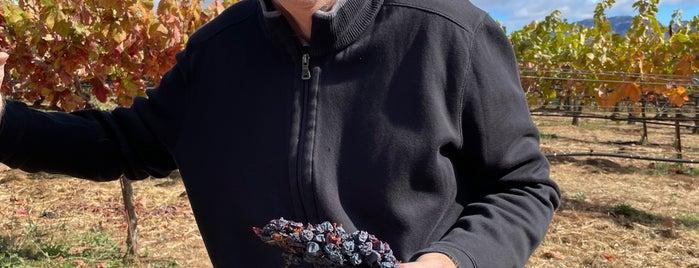 Storybrook Mountain Vineyards is one of Wineries.