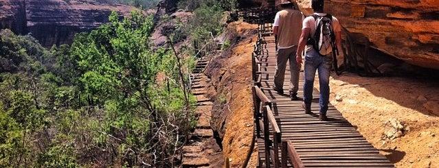 Parque Nacional da Serra da Capivara is one of UNESCO World Heritage Sites in South America.