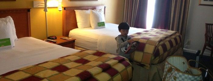 La Quinta Inn Orlando International Drive North is one of Hotel.