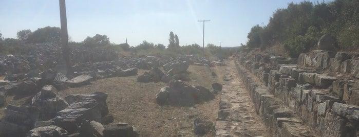 Kyzikos Antik Kenti is one of Posti salvati di Derya.
