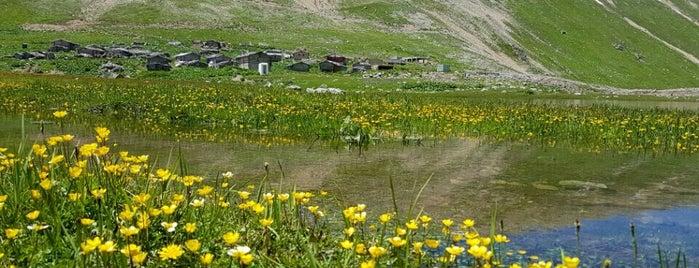Eğnaçor Yaylası is one of Mountain Resorts In Black Sea Region.