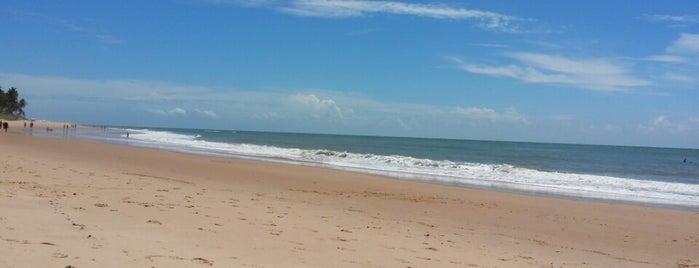 Praia Iberostar is one of Bellaさんのお気に入りスポット.