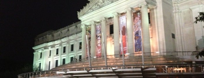 Brooklyn Museum is one of BK Stuff To Do.