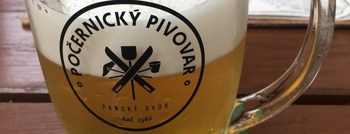 Počernický pivovar is one of Praha Baru.