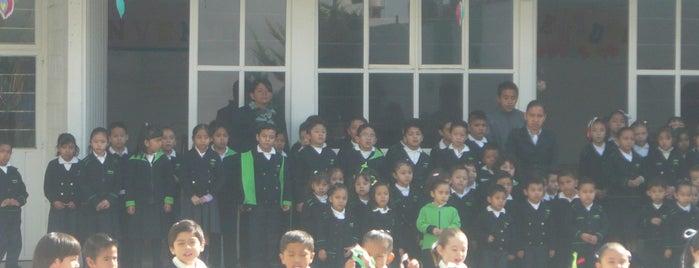 Liceo Serdan de Oriente is one of สถานที่ที่ Antonio ถูกใจ.