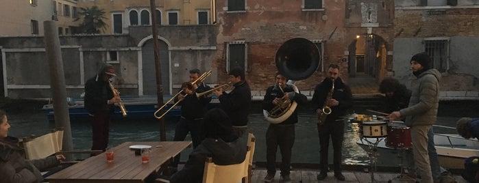 Timon is one of Venezia.