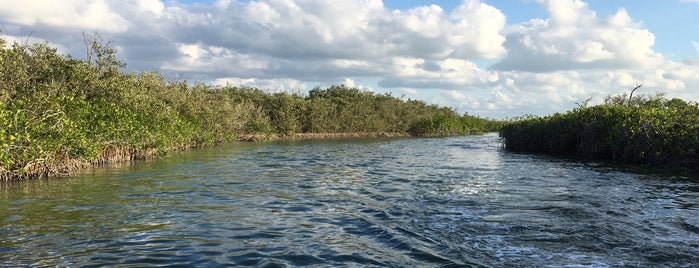 Punta Allen is one of Lugares favoritos de Rudy.