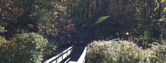 Wyckoff Wildlife Center is one of Nature.