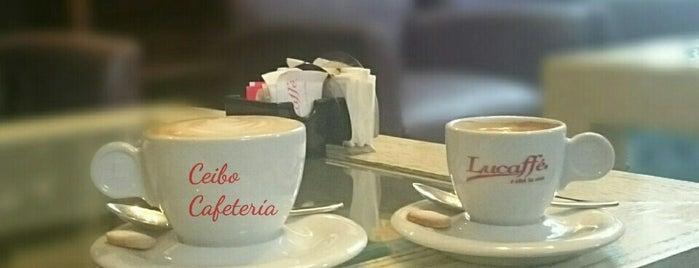 Ceibo Emporio Cafetería is one of José Ignacioさんのお気に入りスポット.