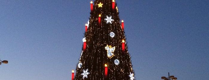 Weihnachtsbaum is one of Weihnachtsmärkte Ruhr.