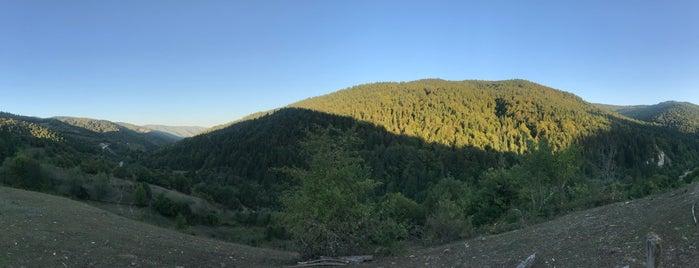Gökpınar Köyü is one of Ulus İlçesi Köyleri.