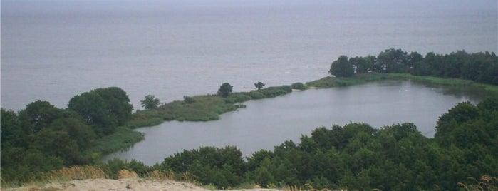 Озеро Лебедь is one of Lieux qui ont plu à Ola.