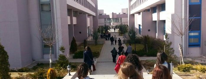 Ankara Üniversitesi Bilgisayar Mühendisliği Bölümü is one of Uğur : понравившиеся места.