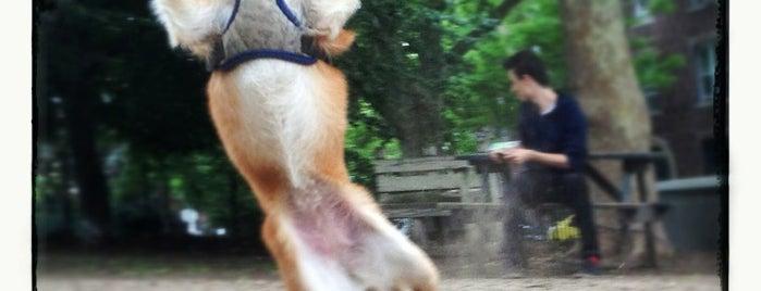 Cooper Dog Park is one of Orte, die Leah gefallen.