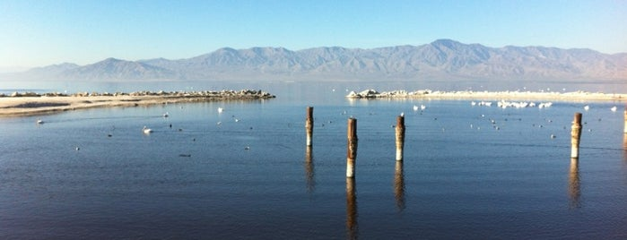 Salton Sea State Recreation Area is one of Locais curtidos por Karl.