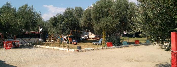 Zeytindalı Beach&Camping is one of Nilüfer 님이 좋아한 장소.
