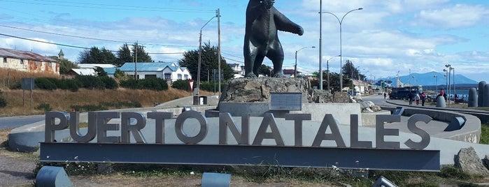 Puerto Natales is one of Sandra 님이 저장한 장소.