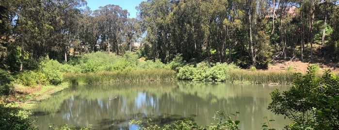 Pine Lake Park is one of SF3.