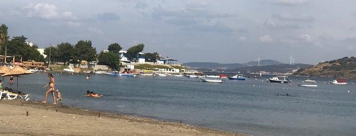 Burunucu Plajı is one of like.