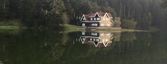 Gölcük Tabiat Parkı is one of Lugares favoritos de Rabia.