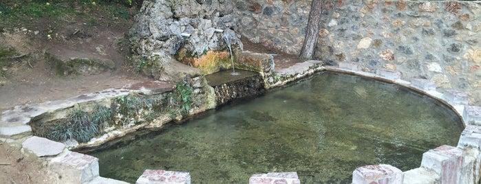 Çepni Maden Suyu is one of Lugares favoritos de Rabia.
