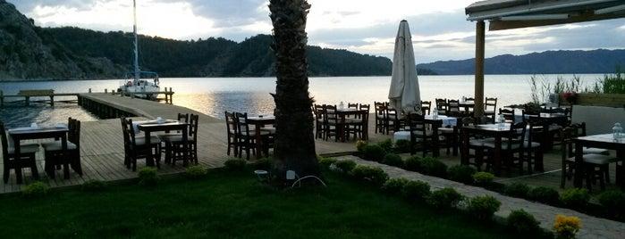 Caria Yacht Club is one of Gidilecek.