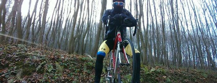 Bufet Pri Lanovke Na Kolibe is one of Cyklo bufety BA.