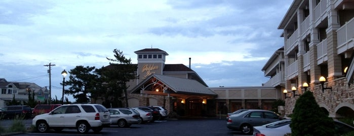 ICONA Golden Inn is one of Orte, die Brett gefallen.