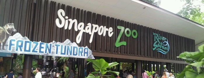 Singapore Zoo is one of Сингапур.
