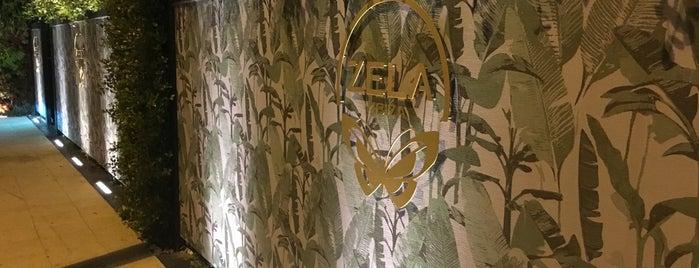 Zela is one of Lugares guardados de Carol.