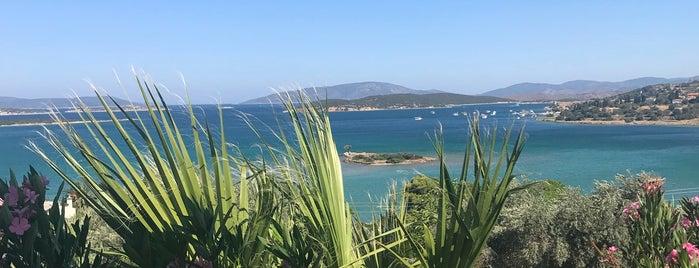 Agios Giannis, Nekta, Chios, Greece is one of Evamer 님이 좋아한 장소.