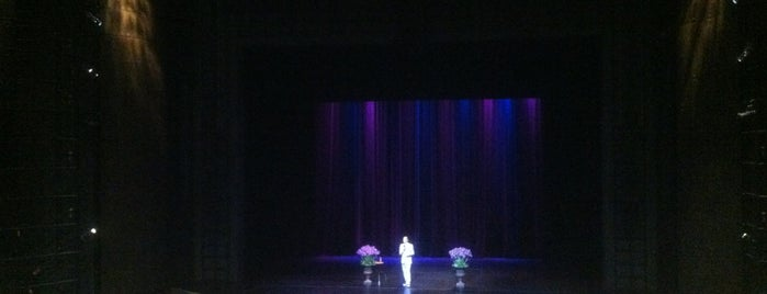 Harris Theatre for Music and Dance is one of Comedy & Theater in Chicagoland.