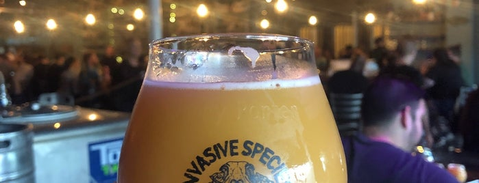 Invasive Species Brewing is one of Hollywood, FL.