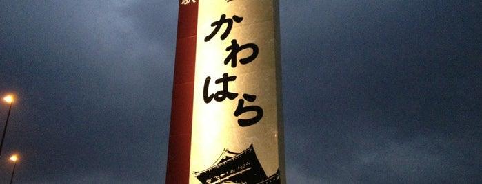 道の駅 清流茶屋かわはら is one of Posti che sono piaciuti a Shigeo.