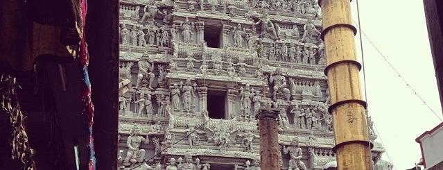 Parthasarathy Temple is one of Posti salvati di JOY.