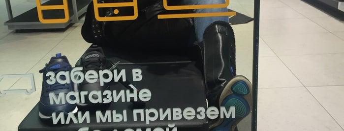 576034179331 adidas is one of Спортивные магазины.