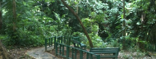 Jardín Botánico, UPR is one of Puerto Rico.