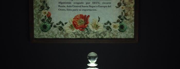 Museo Nacional Bellas Artes Plaza Vespucio is one of Museos.