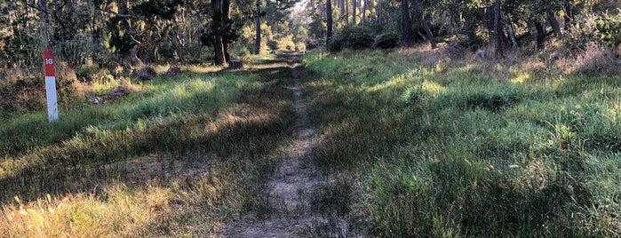 Rip Van Winkle Open Space is one of HWY1: Santa Cruz to Monterey/Carmel.